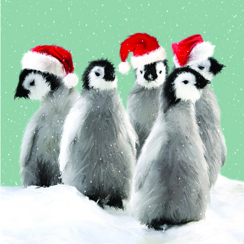 Waddle - Small Christmas Card Pack