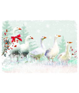 It's Starting to Snow - Christmas Card Pack