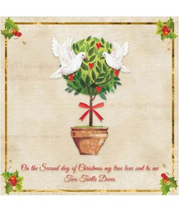Christmas Turtle Dove - Large Christmas Card Pack