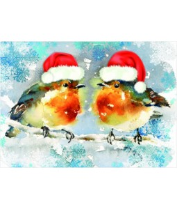 Christmas Robins - Christmas Card Pack