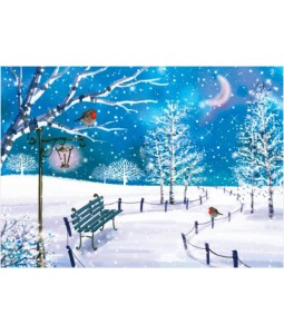 Birds in the Park - Christmas Card Pack