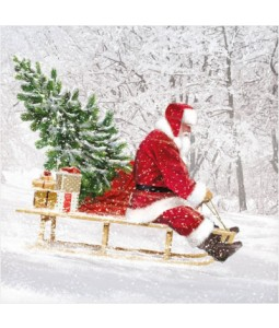 Santa on a Sleigh - Small Christmas Card Pack