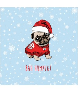 Bah Humpug - Small Christmas Card Pack