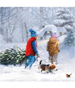Kids in Snow - Small Christmas Card Pack