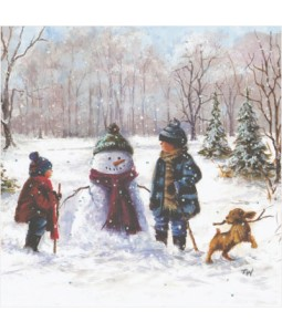 Fun in the Snow - Small Christmas Card Pack