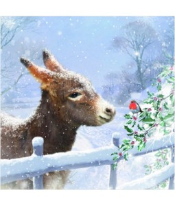 Donkey and Robin - Small Christmas Card Pack