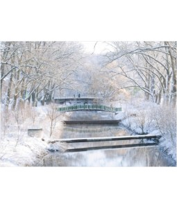 Winter River - Christmas Card Pack