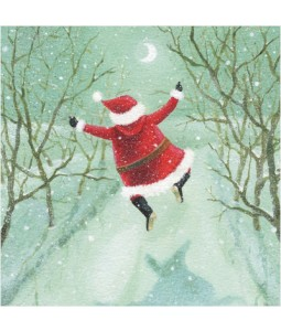 Boxing Day Delight - Small Christmas Card Pack
