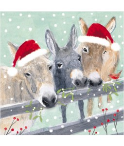 Over the Fence - Small Christmas Card Pack