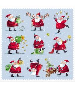 Santa Fun - Small Christmas Card Pack
