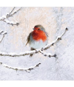 Robin on a Branch with Flitter - Small Christmas Card Pack