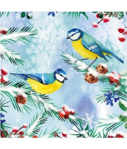Blue Tits on Branches - Small Christmas Card Pack
