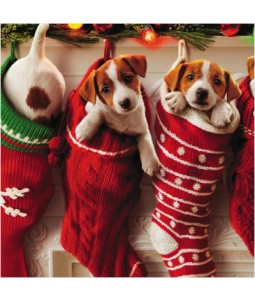 Pups in Stockings - Small Christmas Card Pack