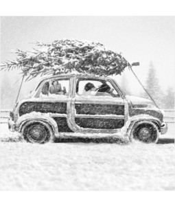 Dogs with Tree in Car - Small Christmas Card Pack