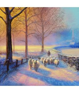 Sheep Walk - Small Christmas Card Pack