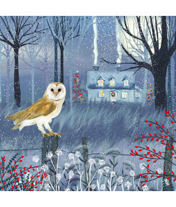 Owl and Cottage - Small Christmas Card Pack
