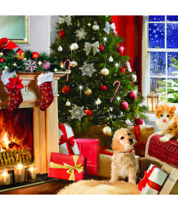 Keeping Warm - Large Christmas Card Pack