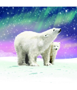 The Northern Lights - Large Christmas Card Pack