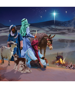 Shepherds and Star - Large Christmas Card Pack