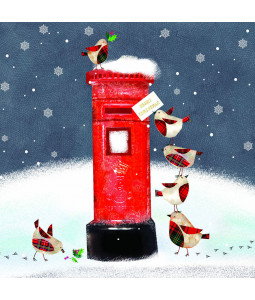 Robin Mail - Small Christmas Card Pack (