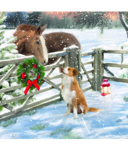 Festive Catch Up - Small Christmas Card Pack