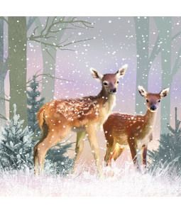 First Snowfall- Large Christmas Card Pack