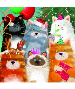 Cat Party - Small Christmas Card Pack