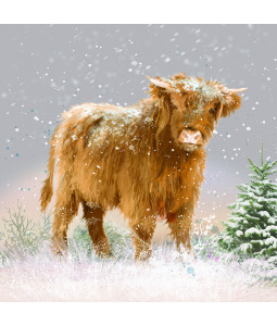 Highland Cow - Small Christmas Card Pack