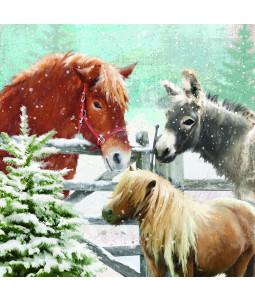 Hoofing Around - Large Christmas Card Pack