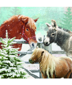Hoofing Around - Small Christmas Card Pack