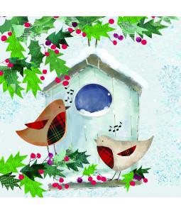 Robin Bird House - Large Christmas Card Pack