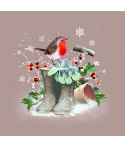 Robin and Wellies - Small Christmas Card Pack