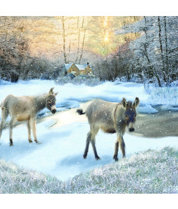 Wintertime Donkeys - Small Christmas Card Pack (