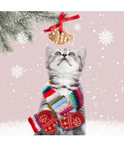 Nosy Kitten - Small Christmas Card Pack