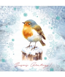 Perching Robin - Large Christmas Card Pack
