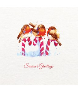 Jolly Holly Robins - Small Christmas Card Pack