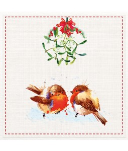 Mistletoe Robins - Large Christmas Card Pack
