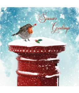 Winter Visitor - Large Christmas Card Pack