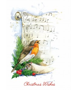 Christmas Tweetings - Christmas Card Pack