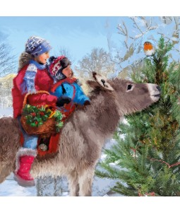 Donkey Ride - Small Christmas Card Pack