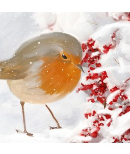 A Christmas card pack with a painted Robin in the snow