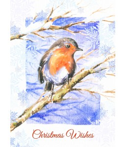 A Christmas card pack with a painted Robin on a branch