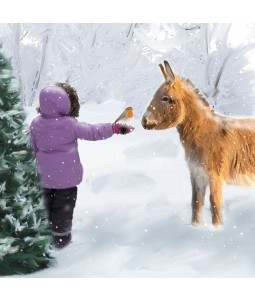 A Christmas card pack with a cute image of a young girl showing a Donkey a Robin
