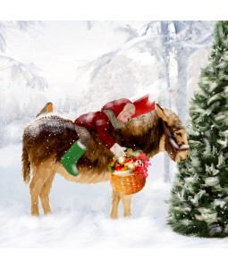 A Christmas card pack with a young boy riding a Donkey