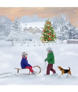 A Christmas card pack with an image of Children playing on a sledge