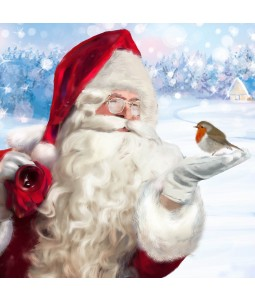 A Christmas card pack with Santa and a Robin