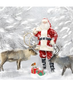 A Christmas card pack with Santa and Reindeers