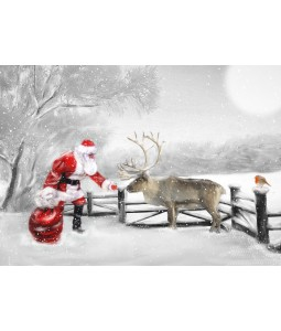 A Christmas card pack with Santa feeding the Reindeer