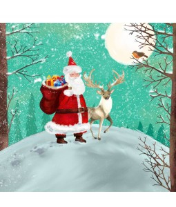A Christmas card pack with Santa in the moonlight