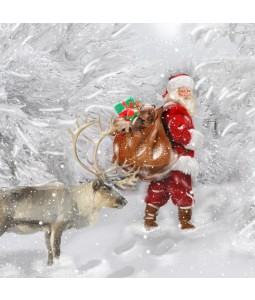 A Christmas card pack with Santa and his Reindeer delivering presents